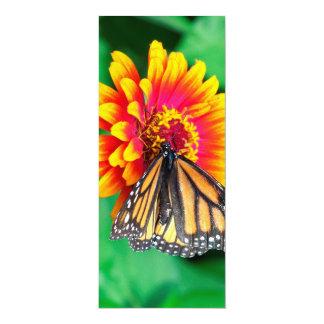 butterfly in a flower card