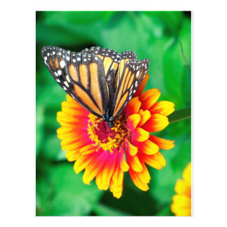 butterfly in a flower personalized flyer