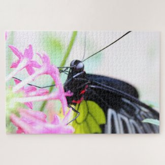 Butterfly in a Thousand Pieces Jigsaw Puzzle