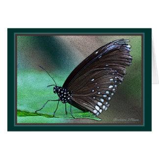 Butterfly in Aqua Card