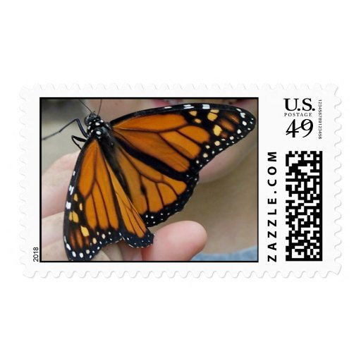 Butterfly In Hand Stamp