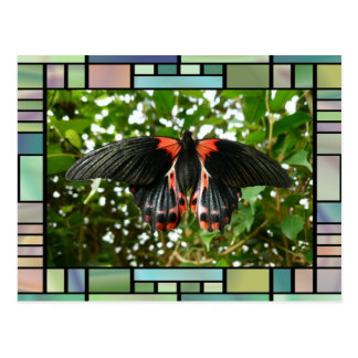 Butterfly in stained glass frame postcard
