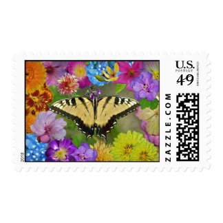 Butterfly in the Garden Postage Stamp