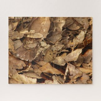 Butterfly in the Leaves - a puzzle