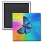butterfly in the sky magnet