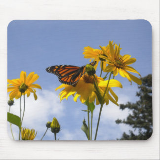 Butterfly in the sky mouse pad