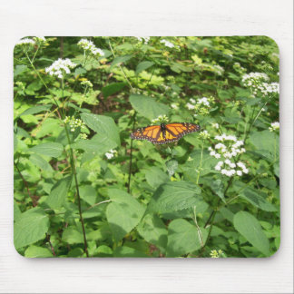 Butterfly in the woods mouse pads
