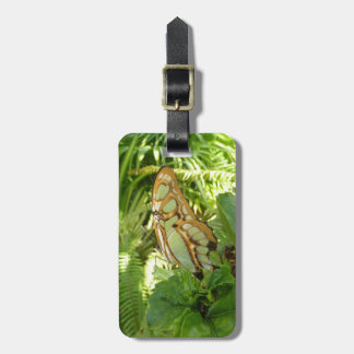 Butterfly in Tropical Leaves Nature Photography Bag Tag