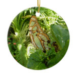 Butterfly in Tropical Leaves Nature Photography Ceramic Ornament