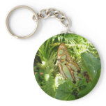 Butterfly in Tropical Leaves Nature Photography Keychain