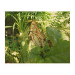 Butterfly in Tropical Leaves Nature Photography Wood Wall Art