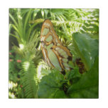 Butterfly in Tropical Leaves Tile
