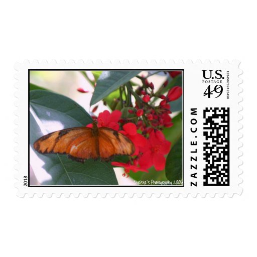 butterfly in washington dc postage