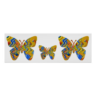 Butterfly - Insects Print