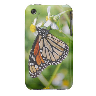 Butterfly iPhone 3 Covers