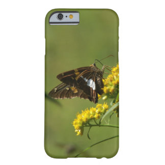 Butterfly, iPhone 6 Case.