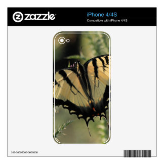 Butterfly Iphone Skin Skins For The iPhone 4