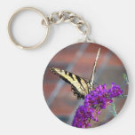 Butterfly Key Chains