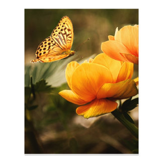 Butterfly Kissing Golden Yellow Flowers Personalized Flyer