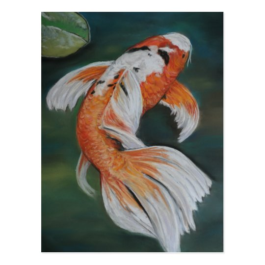Butterfly koi fish art postcard for Koi fish framed prints