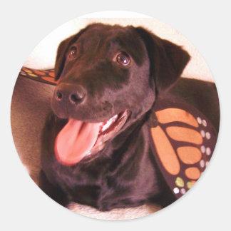 butterfly lab sticker