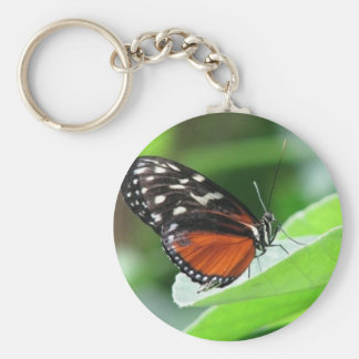 ButterFly Landing Basic Round Button Keychain