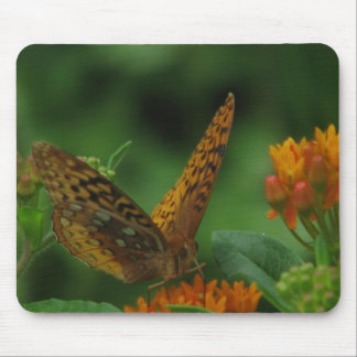 Butterfly Landing Mouse Pad