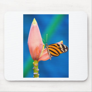 Butterfly Landing on Purple Flower Mouse Pad
