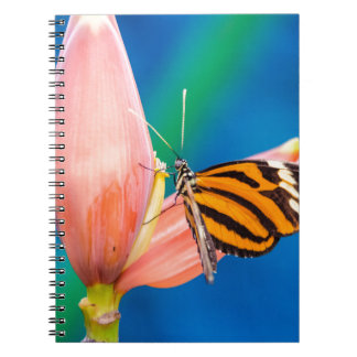 Butterfly Landing on Purple Flower Notebook