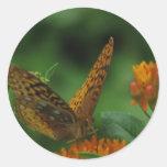 Butterfly Landing Sticker