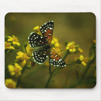 Butterfly / Lange's Metalmark Mouse Mat
