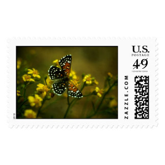 Butterfly / Lange's Metalmark Stamp