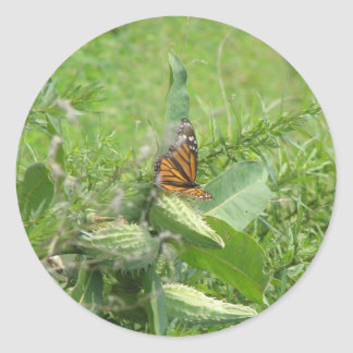 Butterfly Leaves Classic Round Sticker