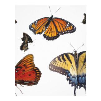 Butterfly Letterhead
