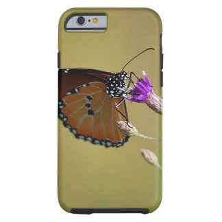 Butterfly life is sweet tough iPhone 6 case