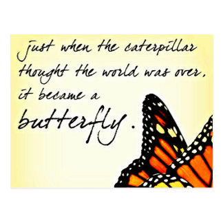 Butterfly Life Struggle Inspirational Quotes Postcard