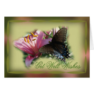 Butterfly & Lily Get Well or other occasion card
