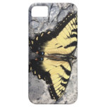 Butterfly Live On iPhone 5 Cases