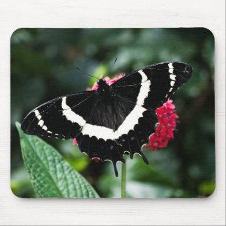 Butterfly Lolipop Mousepad