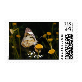 Butterfly Love 1med Postage