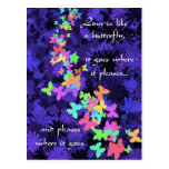 Butterfly Love/Colorful-Quote Post Cards