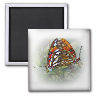 Butterfly Love Magnet