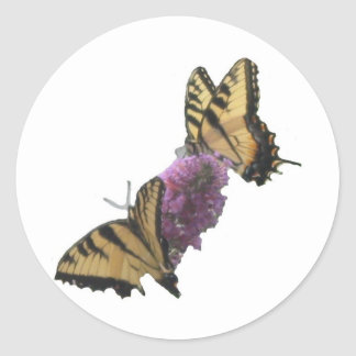 Butterfly Lunch 2 Classic Round Sticker
