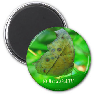 Butterfly-Magnet 2 Inch Round Magnet