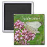 Butterfly Magnet, Transformation 2 Inch Square Magnet