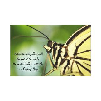 Butterfly Master Canvas Wrap Art Canvas Prints