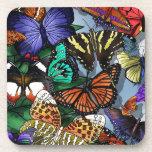 Butterfly Medley Coaster