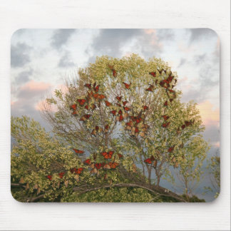 Butterfly Migration Mouse Pad