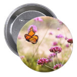Butterfly - Monarach - The sweet life 3 Inch Round Button
