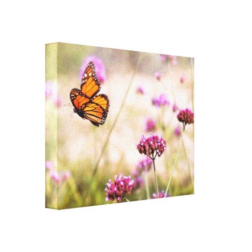 Butterfly - Monarach - The sweet life Canvas Print